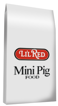 Lil' Red Mini Pig Food